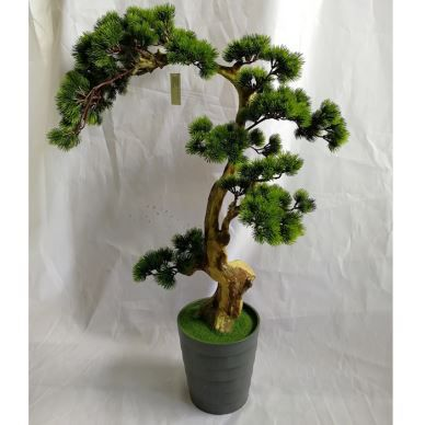 Fake Japanese Black Pine Bonsai en venta